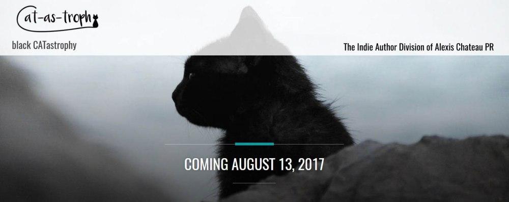 black CATastrophy Banner - Indie