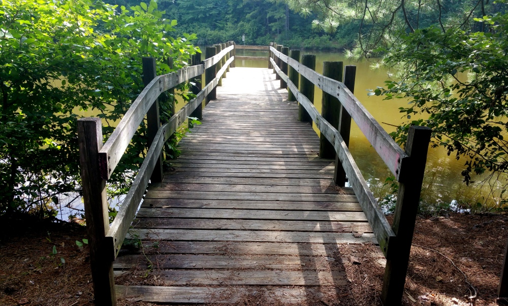 7 Reynolds Nature Preserve Boardwalk.jpg